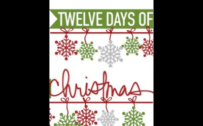 12 Days of Christmas Suprises for Shoppers